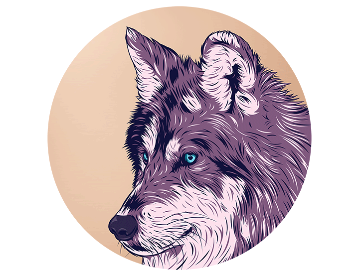 Blue eyed wolf t-shirt