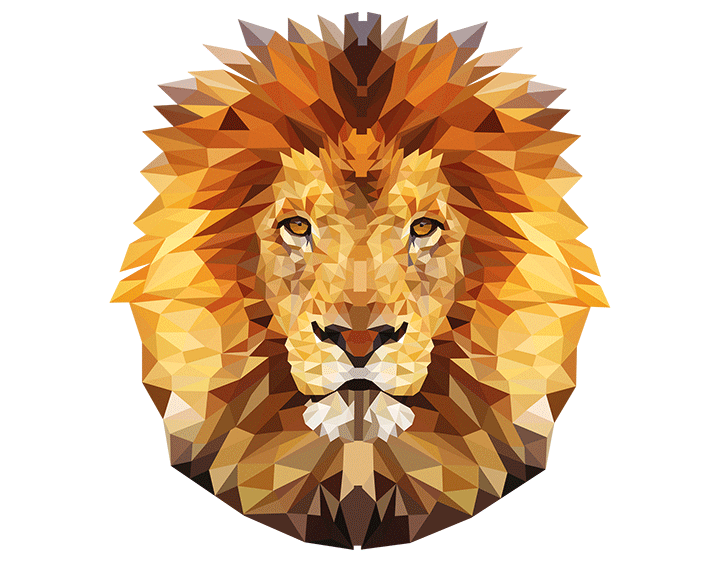 Mr. Lion t-shirt