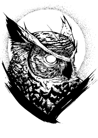 Blackwork Owl t-shirt
