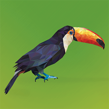 polygon toucan
